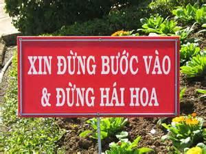 越南语歌词不要采花