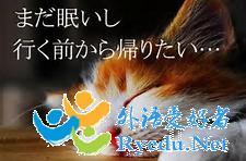 日语表程度发展的副词