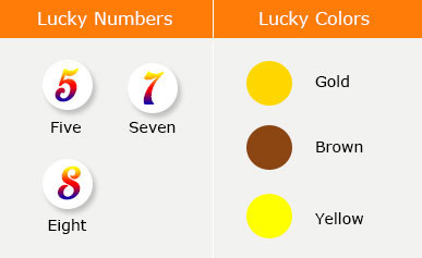 鸡年幸运数字与幸运花