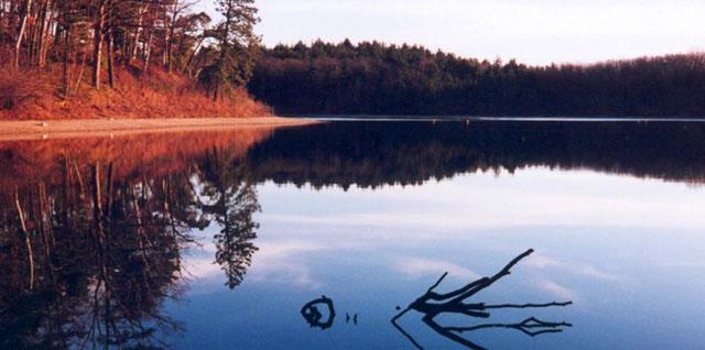 瓦尔登湖读后感