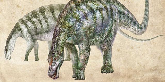 中国又有恐龙新发现